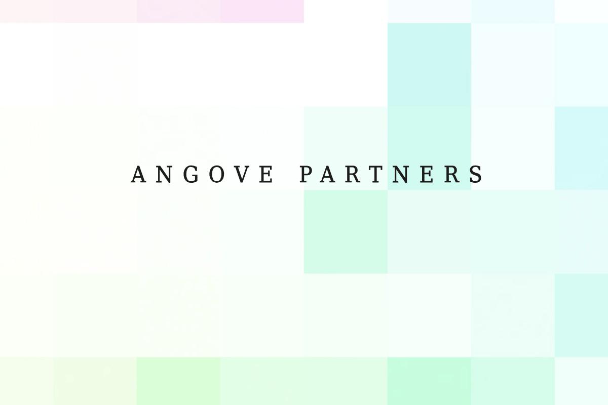 Angove Partners