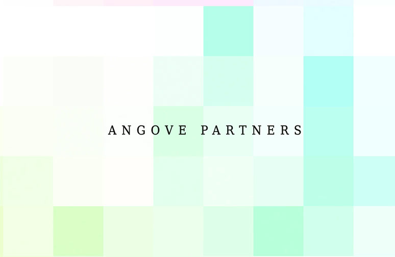 Angove Partners WordPress Web Design