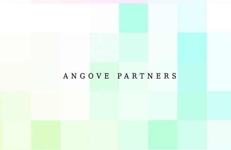 Angove Partners WordPress Web Design
