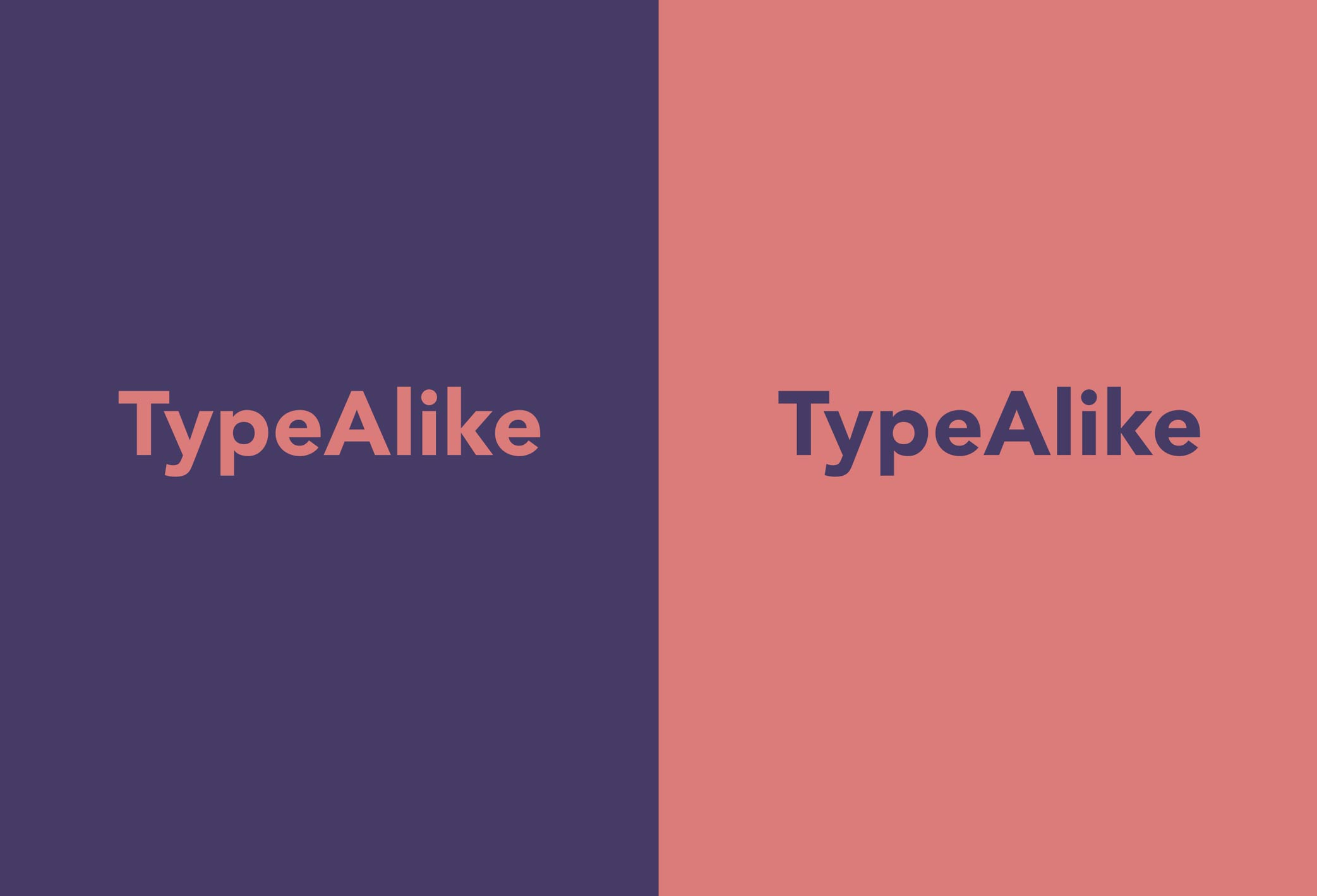type alike brand identity
