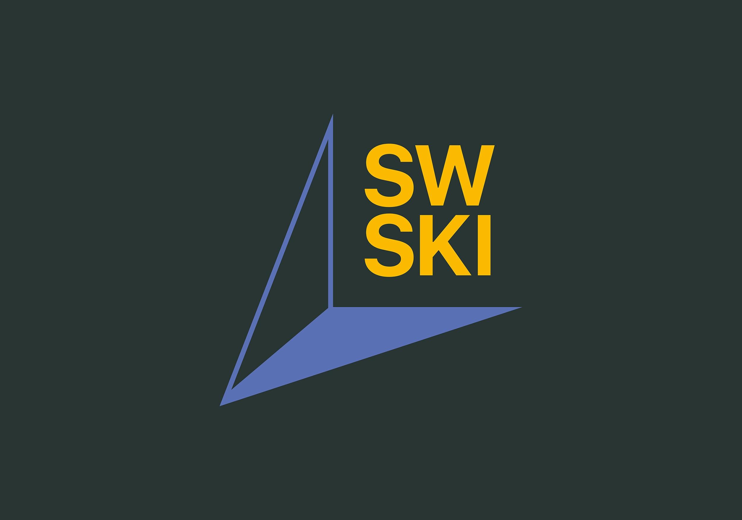 ski brand identity cover image