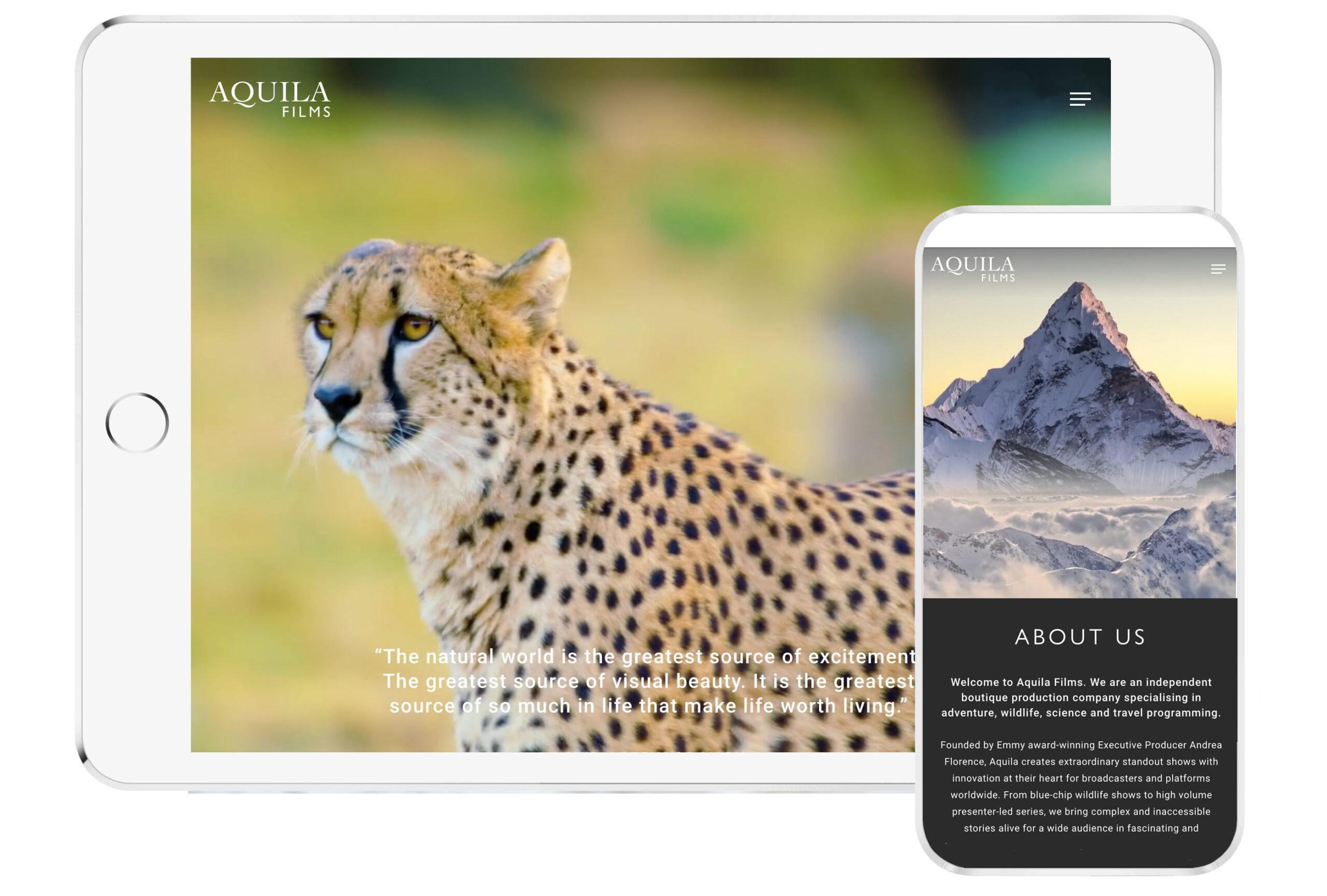 Aquila films web design